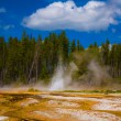 Erupting Geyser - Stock Photo