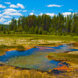 Yellowstone Landscape - Stock Photo
