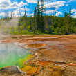 Thermal Pools Yellowstone — Stock Photo #9058850
