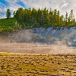 Thermal Pools Yellowstone — Stock Photo #9058927
