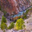 View from the Lower Falls in Yellowstone — Stock Photo