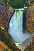 Lower Yellowstone Falls, Yellowstone National Park — Stock Photo