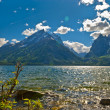 Jackson Lake Landscape — Stock Photo #9379471