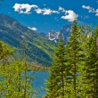 Jackson Lake Landscape — Stock Photo