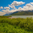 Jackson Lake Landscape — Stock Photo #9379501