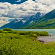 Jackson Lake Landscape — Stock Photo #9379518