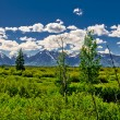 Grand Tetons Mountains Landscape — Stock Photo