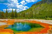 Bella verde geyser — Foto Stock