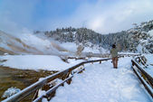 Mammoth Hot Spring Terraces — Stock Photo