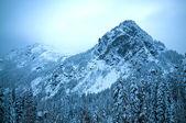 Alpental в snoqualmie пасс зимой горный пейзаж — Стоковое фото