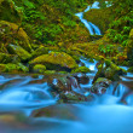 Rainforest Waterfall — Stock Photo #9787479