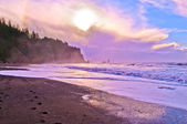 La Push Beach — Stock Photo