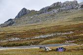 Mount hariettu falklandské ostrovy — Stock fotografie