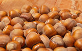 Hazelnuts in a bowl — Stock Photo