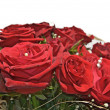 Red roses - Foto de Stock  