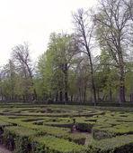 Oca gardens — Stock Photo