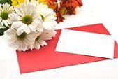 Bílá karta na červené — Stock fotografie