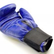 Boxing Glove blue — Stock Photo #9065476