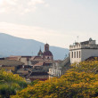 La Orotava from gardens — Stockfoto