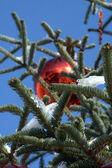 Albero di Natale #1 — Stock Photo