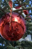 Abbobbo di Natale — Stockfoto