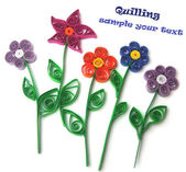 Quilling flowers — Stock Photo