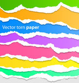 Collection of colorful torn paper — Stock Vector