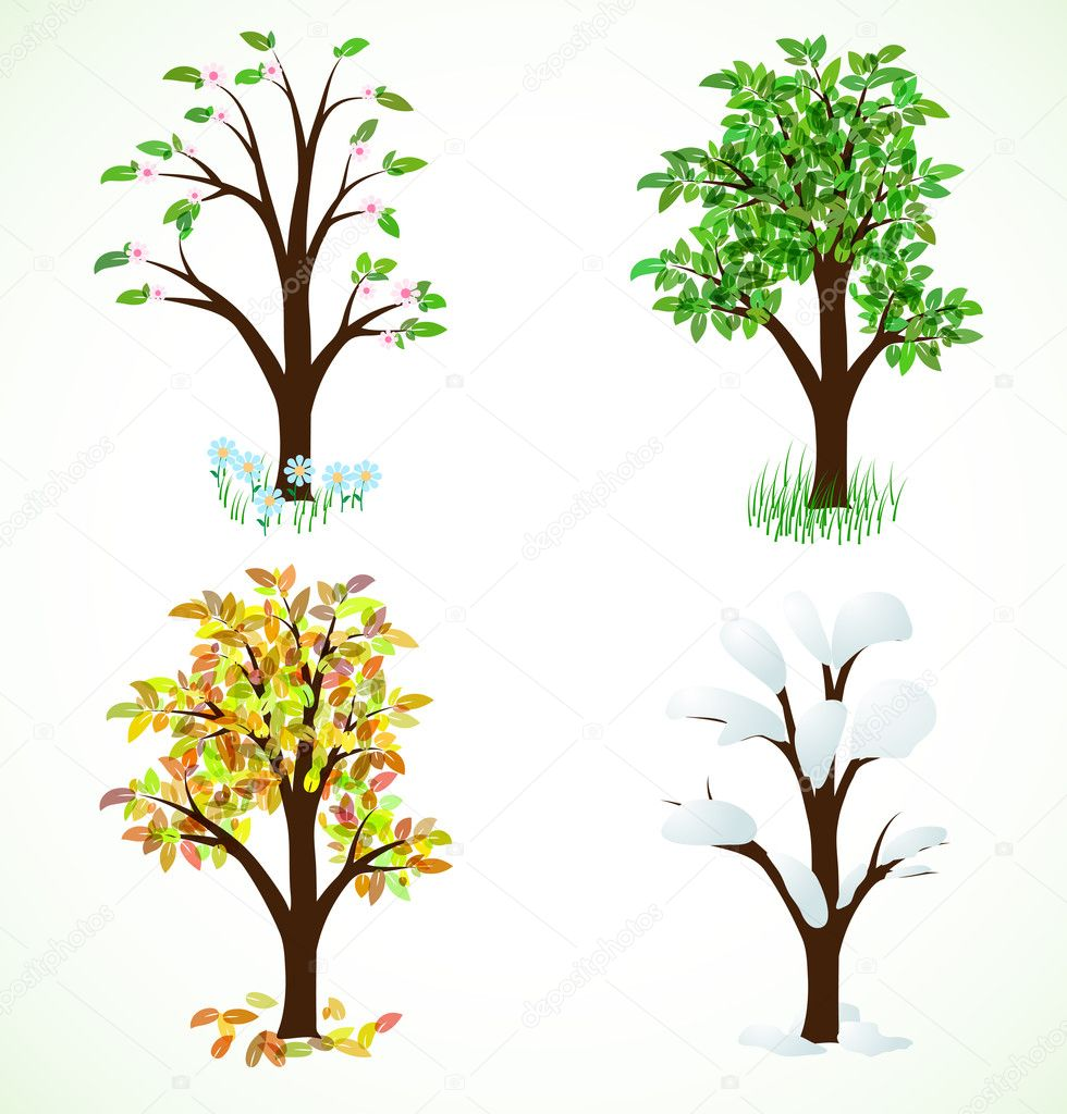 Four season trees. Spring, summer, autumn, winter  Stock Vector #9682316
