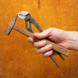 Stock Photo: Hammer and pliers in strong man's hand