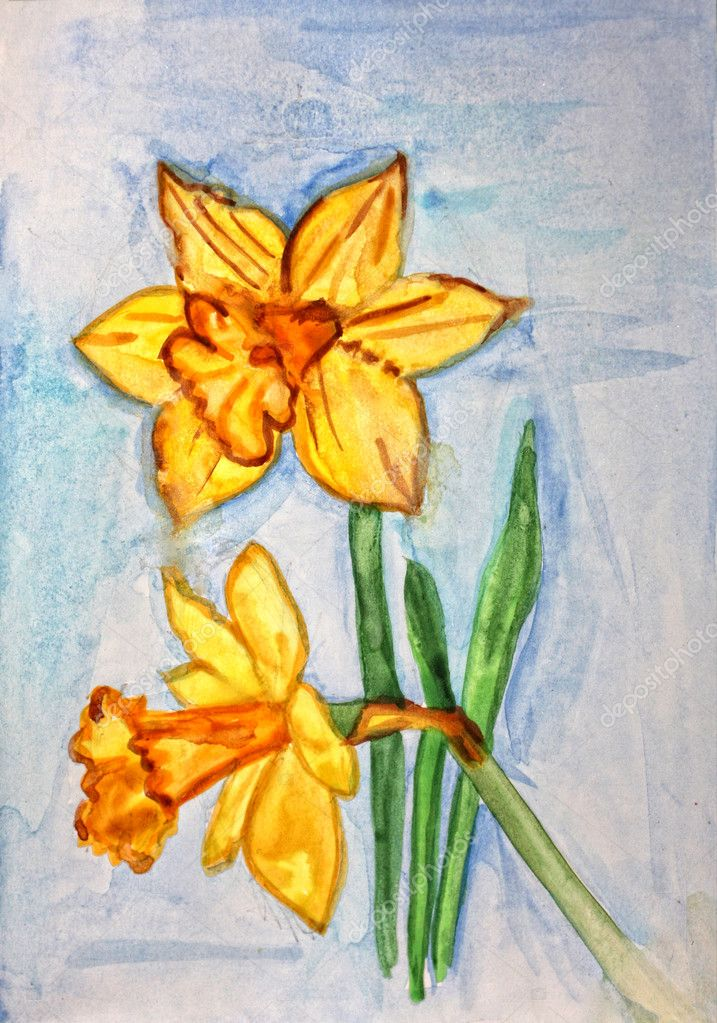 Watercolors painted daffodils — Stock Photo #7987890