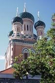 église orthodoxe de nice. paysage — Photo