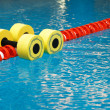 Dumbbells for water aerobics - Stock Photo