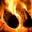 Stock Photo: Firewood burns