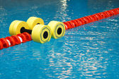 Dumbbells for water aerobics — Stock Photo