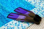 Flippers for diving — Stock Photo