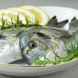 Gilthead with lemon — Stock Photo