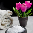 Product for spa treatments with black background — Stock Photo