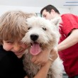 Stock Photo: Little boy holding his Westie at the veterinarian