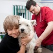 Little boy holding his Westie at the veterinarian — Stock Photo