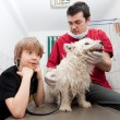 Little boy holding his Westie at the veterinarian — Stock Photo #8827445