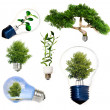 Stockfoto: Collection of green energy symbols