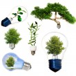 Foto de Stock  : Collection of green energy symbols