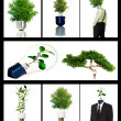 Foto Stock: Collection of green energy symbols