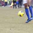 Soccer player kicking the ball — Stock Photo