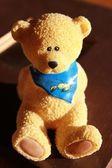 Freundlicher Bär mit Halstuch — Stock Photo