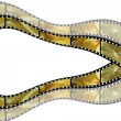 Filmstrip lemon — Stock Photo #9083736