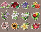 Cartoon flower stickers — Stock Vector