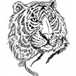 Sketch tiger — Stock Vector