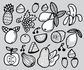 Hand draw fruit — Stock Vector