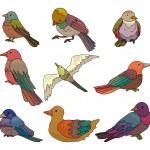 Cartoon bird icon — Stock Vector #8289859